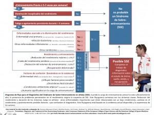 Diagrama de Flujo SSE PRG 2013