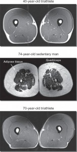 triathlete-aging-muscle-519x1024