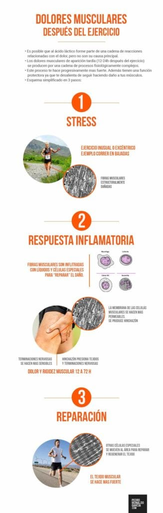 infografia-dolores-musculares
